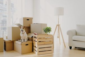 small-load-moving-solutions
